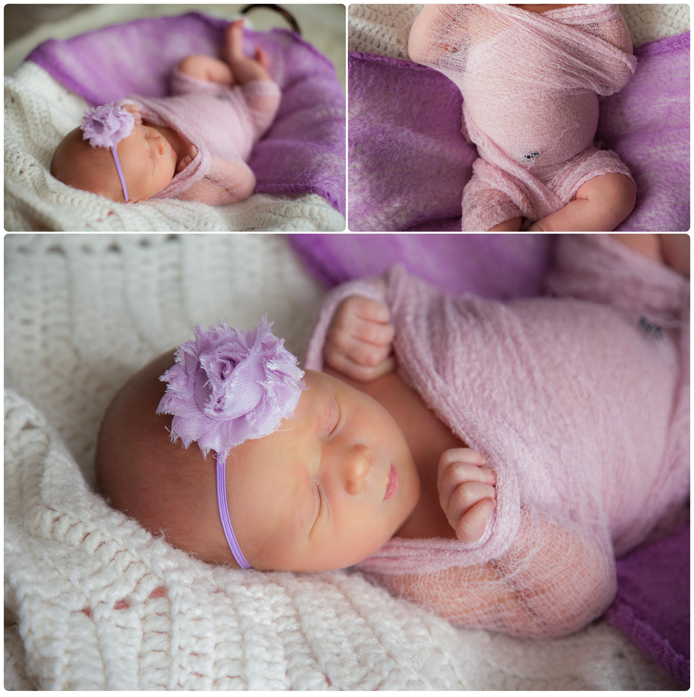 Pittsburgh Newborn Photographer, Purple newborn wrap, purple newborn headband, Melanie Grady Photography