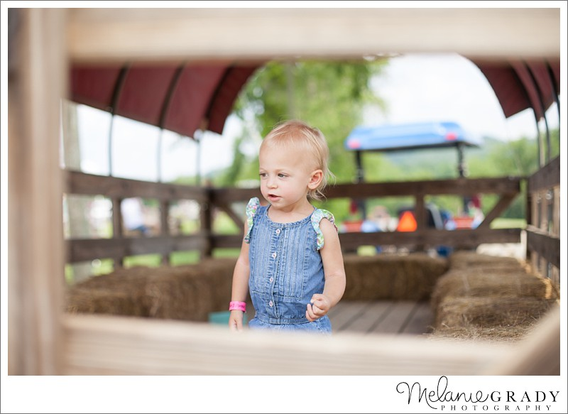 Triple B Farms - Pittsburgh - Melanie Grady Photography