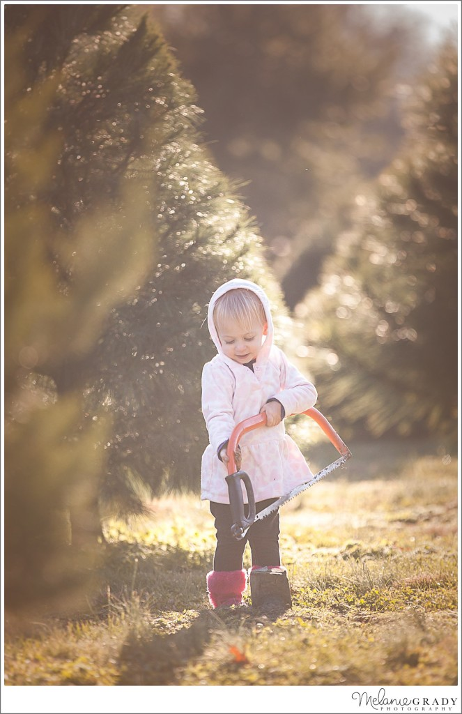 Best Nashville Family Photographer, Nashville wedding photographer, Hendersonville family photographer, Christmas Tree Adventures, Cross Plains, TN Photograoher, newborn photographer, Christmas tree farm